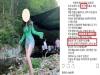 SNS 허위·과대 광고한 유명 인플루언서 15명 적발