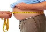 한약제 감비산 이용 비만 치료 효과