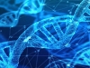폐암·유방암·위암 유전체 분석 끝내고 맞춤 치료 임상 시험
