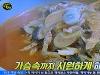 생활의 달인, 대파 짜장면·김치짬뽕 달인...보리새우+두부 찐김치 비법