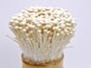 한국산 팽이버섯 먹고 미국서 4명 숨져...리스테리아균 오염