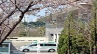 [사진] 코로나19 치료 최전방, 대구의료원에 찾아온 봄