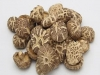 버섯도 자외선 쬐면 비타민 D 증가...말린 표고 풍부