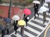 오늘의 날씨...서울·경기·충청·전라·제주 돌풍·천둥·번개 동반 강한 비
