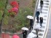 오늘의 날씨...오후 서울·경기·강원영서·충청 중심 약한 비